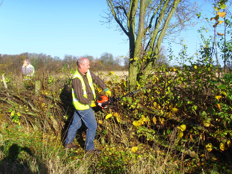 Eddy hedge cutting