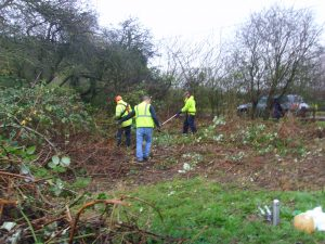 Bramble Clearing Draycott November 2015